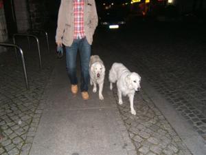 Wanderung 2008, 66 Seen um Berlin 064