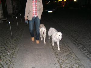Wanderung 2008, 66 Seen um Berlin 064 (2)
